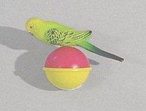 Hračka andulka na zem- 8cm