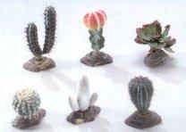 Terarijní dekorace sada kaktusů 6ks